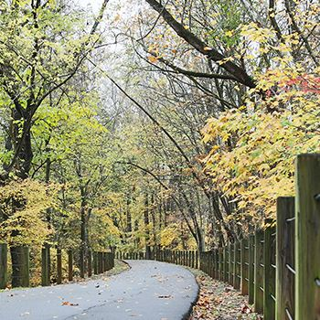 Clarksville park with a winding path through the trees