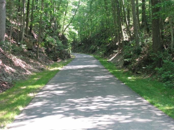 Paved trail with trees overhanging